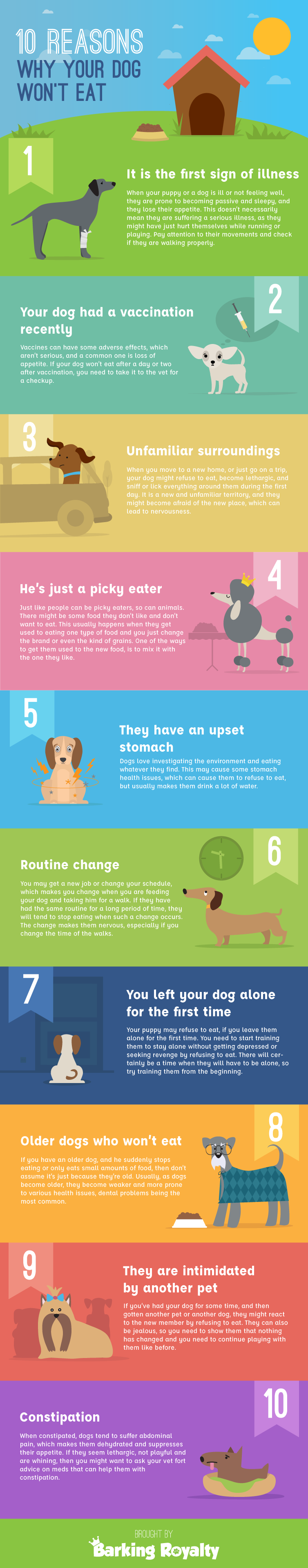 10 reasons why your dog won't eat from Barking Royalty