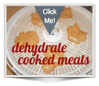 dehydrated pre-cooked chicken on Nesco dehydrator