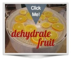 oranges on Nesco dehydrator