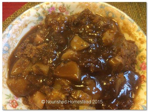 Amish Rhubarb Pudding - Nourished Homestead