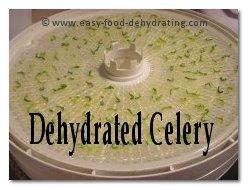 Dehydrated celery
