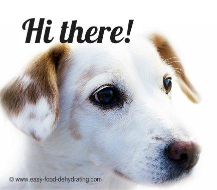 Fido the Pooch Treat dog