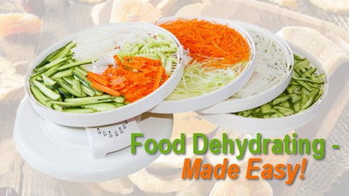 Food Dehydrating Made Easy online video course