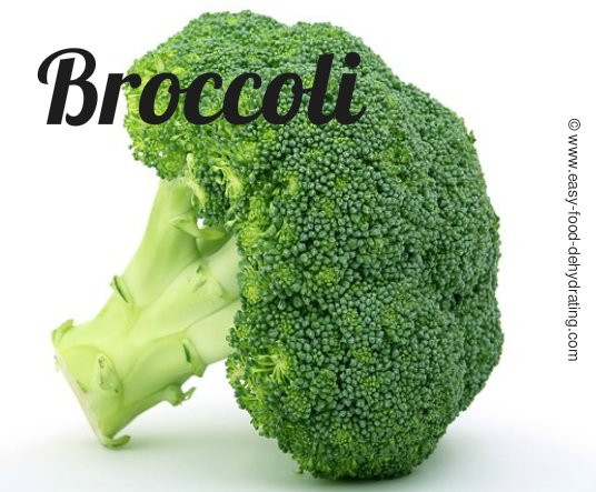 Dehydrating Broccoli Even Your Kids Will Eat It