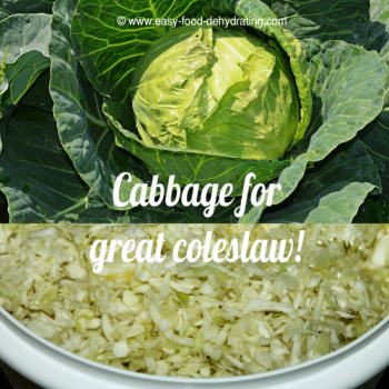 Cabbage for great coleslaw