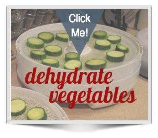 zucchini on Nesco dehydrator