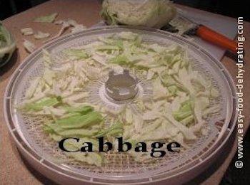Sliced cabbage on Nesco dehydrator tray