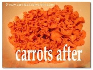 Dehydrated carrots - very colorful!