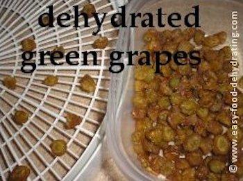 Dehydrated Grapes AKA Raisins