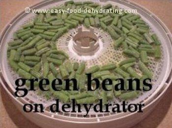 green beans on Nesco dehydrator tray