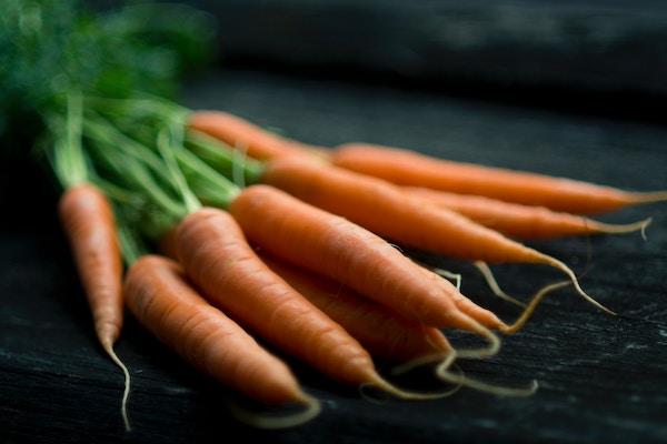 carrots on dark background