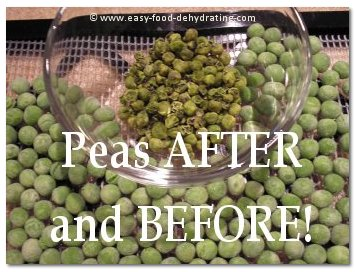 Peas before and after dehydrating