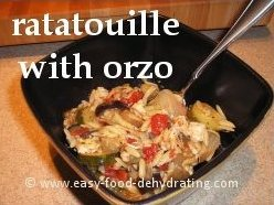 Ratatouille with Orzo