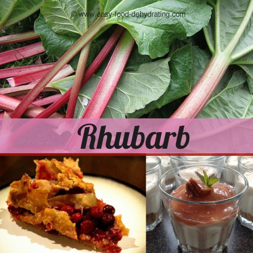 rhubarb stalks and stems, pie, and smoothie