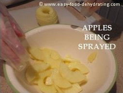 Spraying Apples ready for Dehydrating.