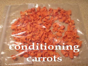 conditioning dehydrated carrots