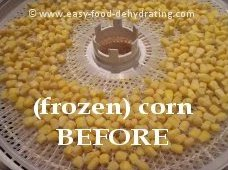 Corn on Nesco dehydrator tray