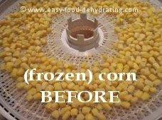 Corn on Nesco dehydrator tray