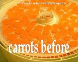 sliced carrots on dehydrator tray