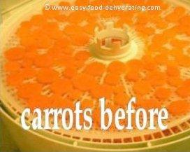 Sliced carrots on Nesco dehydrator