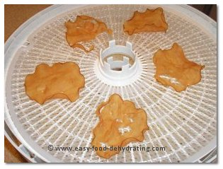 dehydrated chicken on Nesco dehydrator