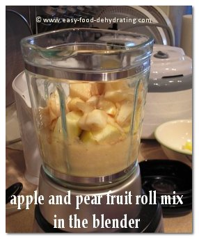 Apple and Pear Fruit Roll Mix