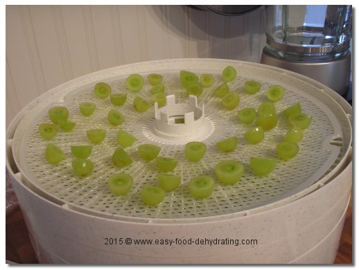 sliced green grapes on Nesco dehydrator