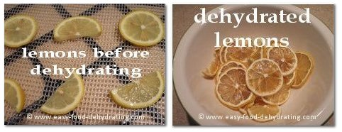 Lemons before and after dehydrating