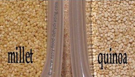 Millet and Quinoa