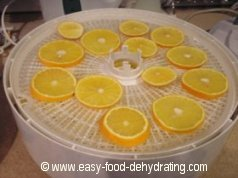 Sliced Oranges on Nesco Dehydrator
