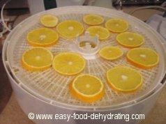 Sliced Oranges on Nesco Dehydrator