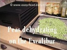 Peas dehydrating on Excalibur Dehydrator