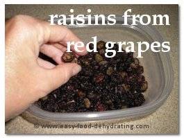 Dehydrated Red Grapes