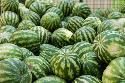 Watermelons in a pile