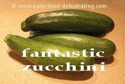 Fantastic Zucchini